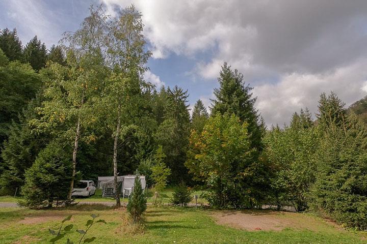 Camping-im-Waldwinkel