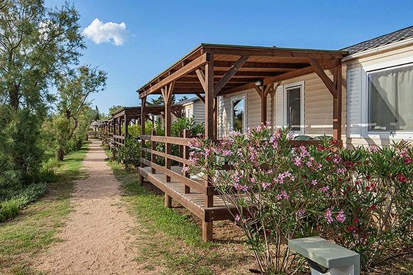 umweltfreundlicheCP_spanien_0006_Camping-Laguna---Mobilheime-an-einer-Strasse-auf-dem-Campingplatz.png