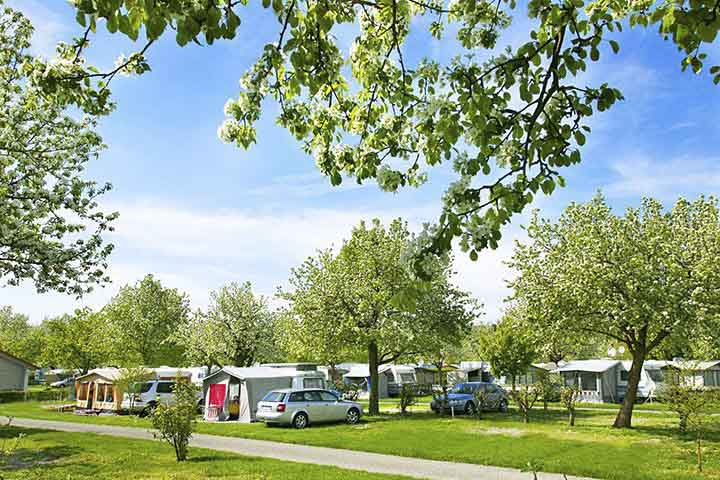 ADAC-Superplaetze-Camping-Wirthshof
