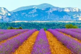 Die 100 beliebtesten Campingplätze in Frankreich 2020