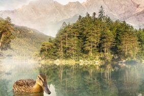 Camping am Eibsee: Bayerische Karibik mit beeindruckendem Bergpanorama
