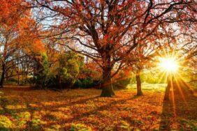 Norden, Süden, Osten, Westen – Hier campt Deutschland im goldenen Herbst