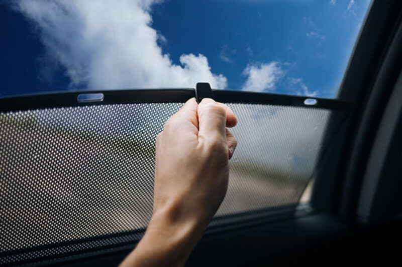 Insektenschutz fürs Fenster