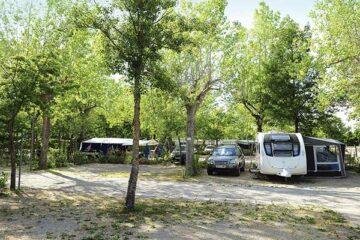 Wohnwagen und Zeltstellplatz zwischen Bäumen