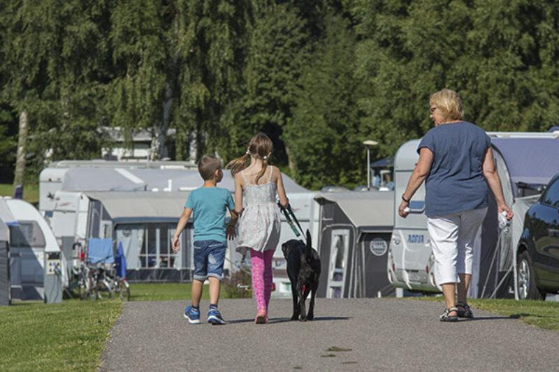 DCU Camping Hornbak