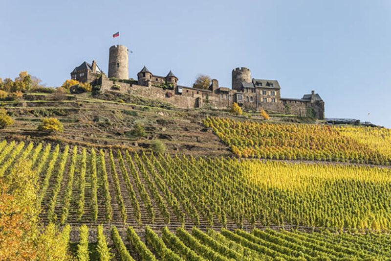 Burg Thurant mit Weinberg