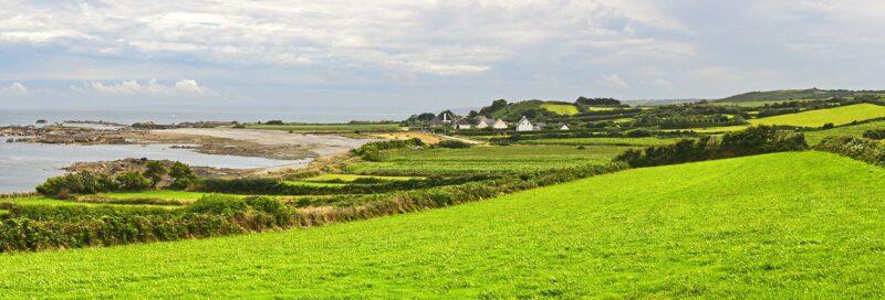 Grüne Wiesen in der Normandie