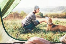 3 tolle Campingplätze für deinen Hund