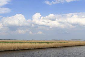 Naturcamping in den Niederlanden: Die 3 schönsten Provinzen