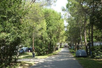 Camping Village Belvedere Pineta