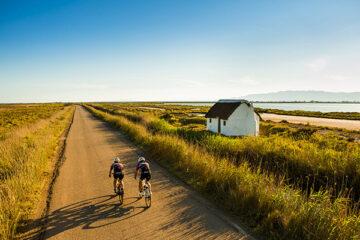 Fahrradfahrer im Ebrodelta