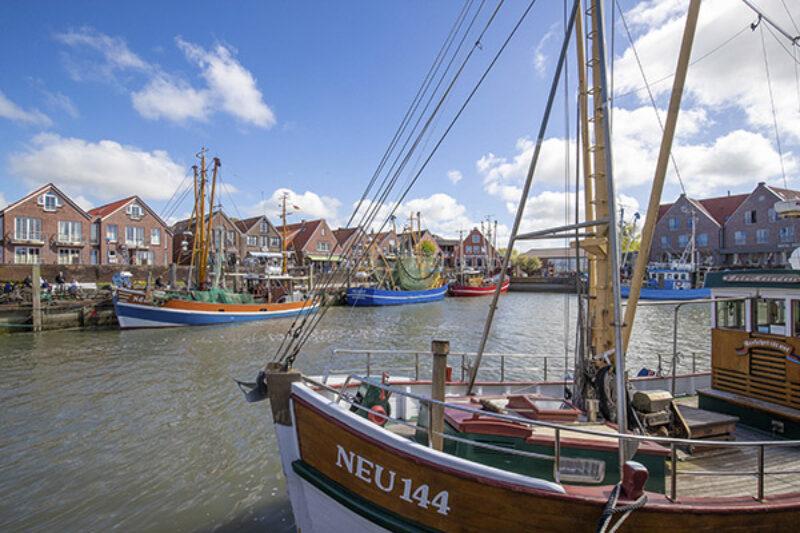 Im Hafen können Gäste einen Tee oder ein Bier trinken, ein Fischbrötchen essen oder einfach nur dem Treiben vor Ort zusehen.