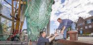Am Hafen können die Fischer bei der Arbeit beobachtet werden, den Neuharlingersiel liegt eine aktive Krabbenkutterflotte.