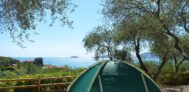 Stellplätze im Schatten der Bäume am Mittelmeer