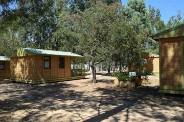 Camping Paradella - Mobilheime vom Campingplatz zwischen Bäumen
