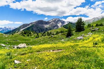 Berge Pässe Col de Vars