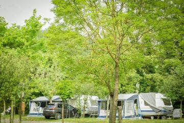 Camping-Moli-Serradell---Stellplaetze-fuer-Wohnwagen-zwischen-Baeumen