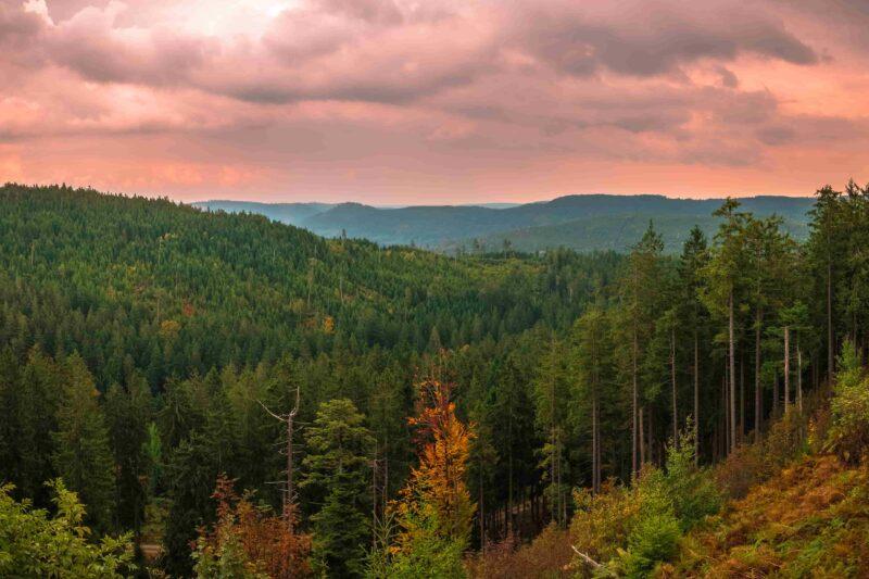 Panoramablick von der Schwarzwaldhochstraße