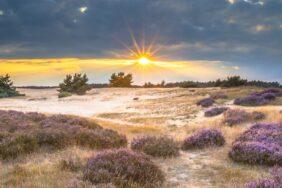 Camping in Gelderland – Holland neu entdecken